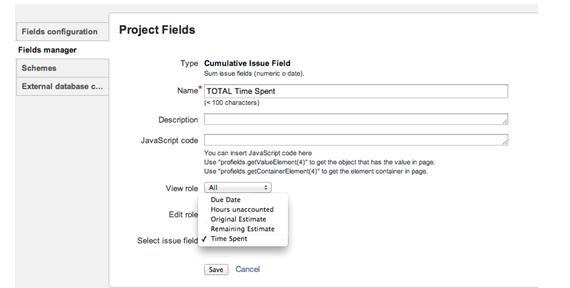 Cumulative Project Fields
